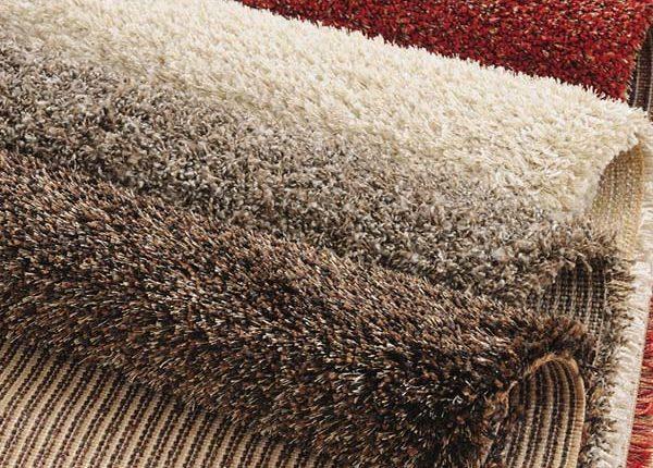 Florida Carpet Cleaner Kings Directory