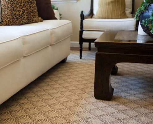 Florida Carpet Cleaners Directory
