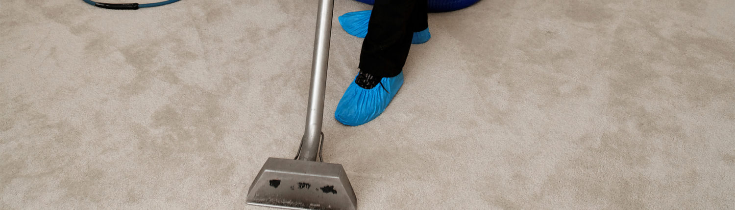 Florida Carpet Cleaner Kings Directory
