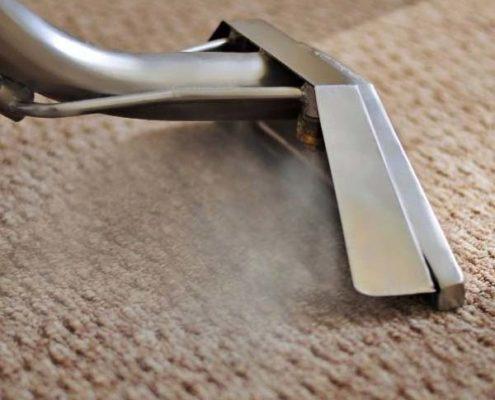 Florida Carpet Cleaners Kings