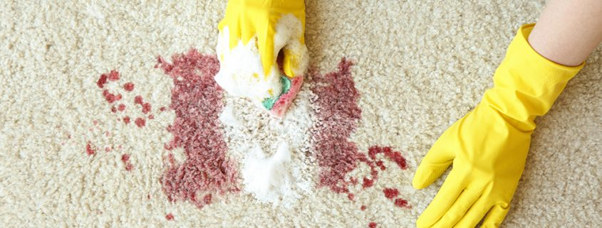 Best Ways to Clean Blood from carpets
