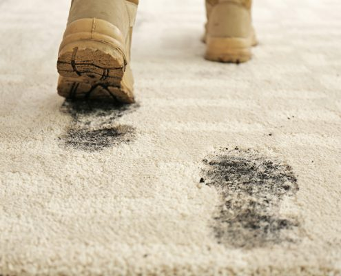 How to get mud out of carpets_